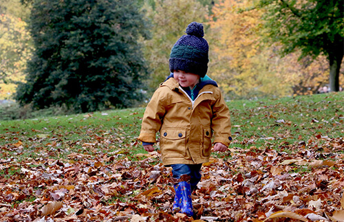 How to Enjoy Fall While Social Distancing